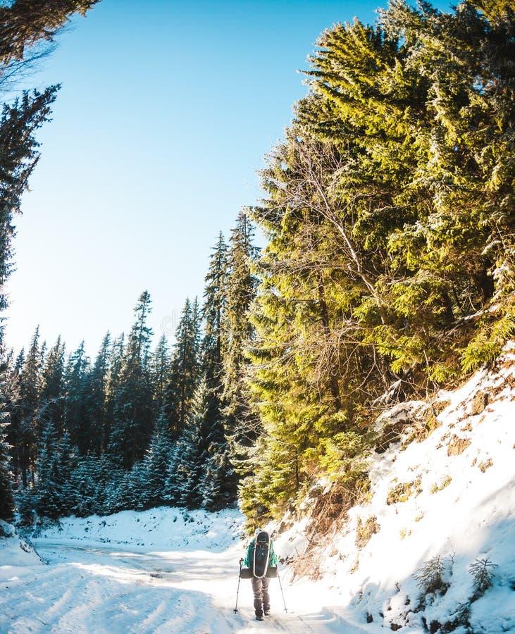 Donna con lo zaino e le racchette da neve nelle montagne di inverno immagine stock