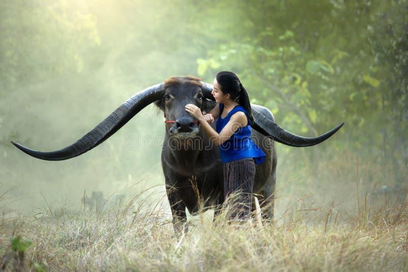 Donna con un bufalo immagini stock libere da diritti