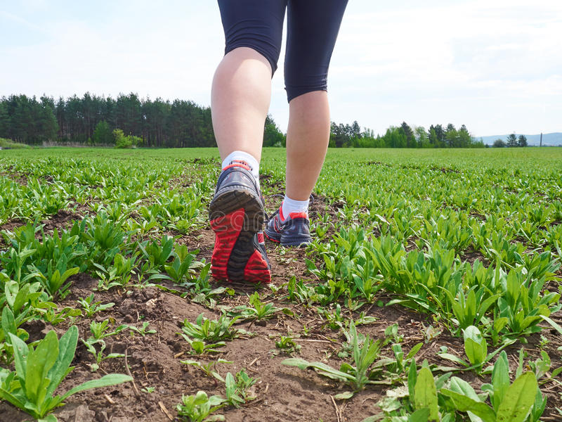 donna con un paio atletico delle gambe fotografia stock
