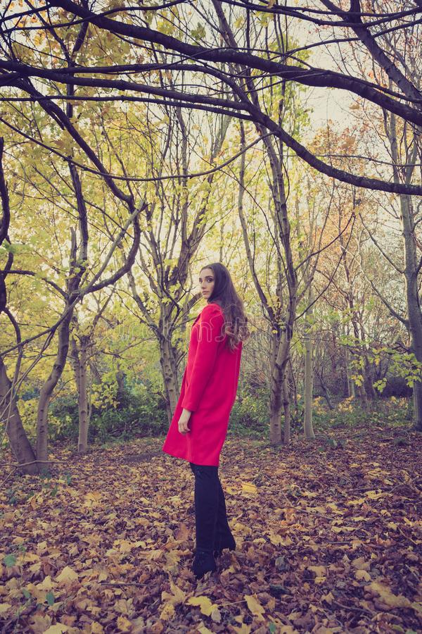 Donna da solo in una regolazione della foresta che porta un cappotto rosso immagini stock libere da diritti