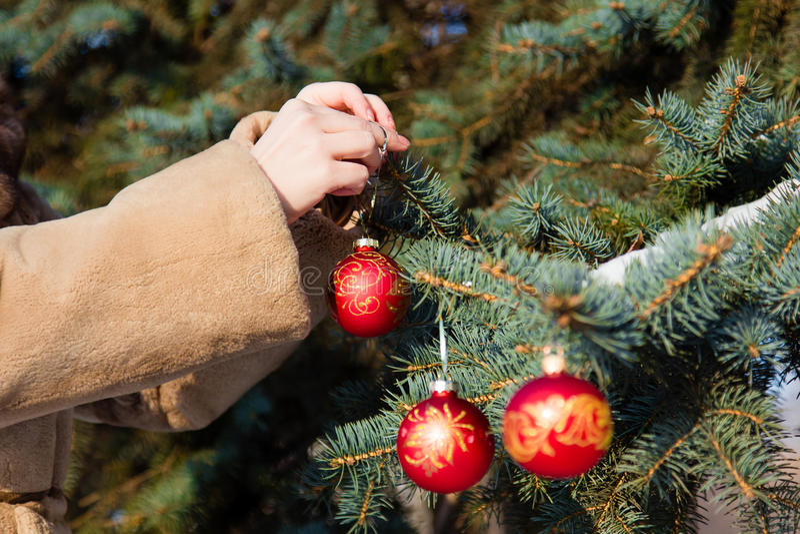 Donna Che Appende Una Palla Rossa Di Natale Sul Primo ...