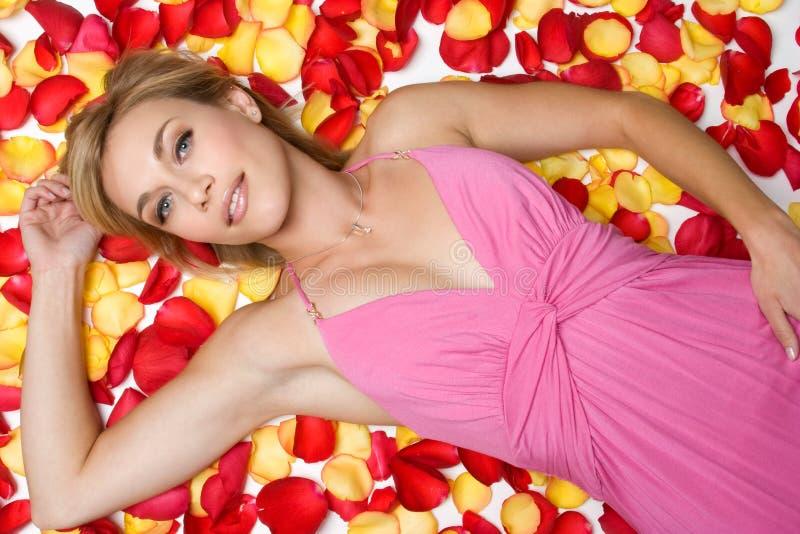 Donna dei petali di Rosa immagine stock
