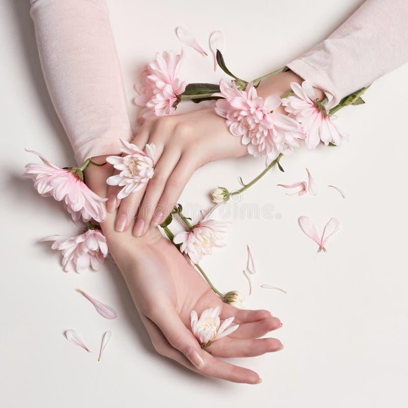 Donna del ritratto di arte di modo in vestito e fiori da estate in sua mano con un trucco di contrapposizione luminoso Ragazze cr fotografia stock