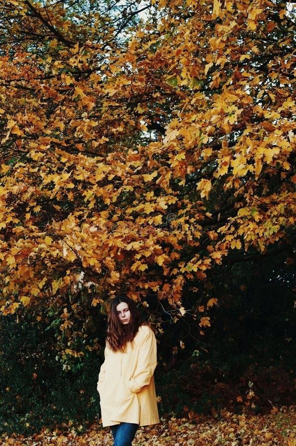 Donna del viaggiatore di libertà Immagine con il filtro dal instagram fotografia stock