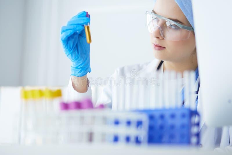 Donna dell'assistente di laboratorio che analizza un campione di sangue fotografia stock libera da diritti