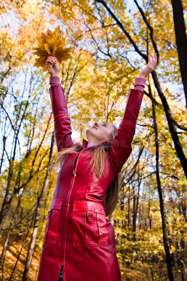 donna della foresta fotografia stock libera da diritti
