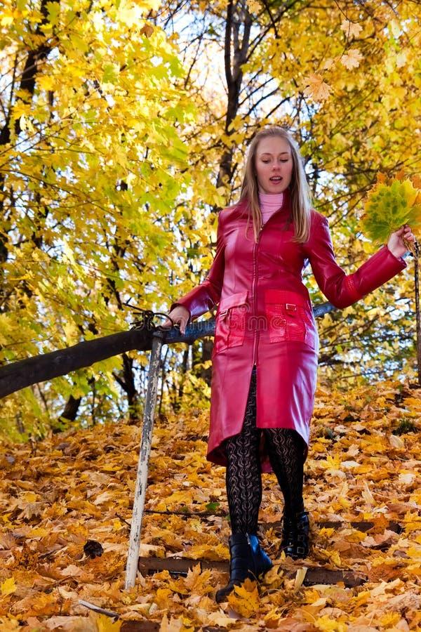 donna della foresta fotografie stock libere da diritti