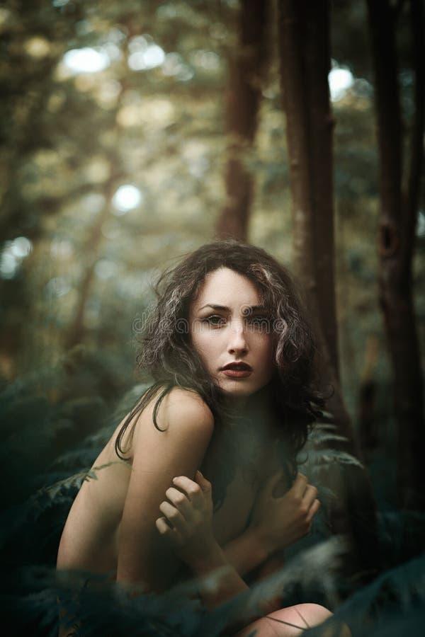 Donna della foresta immagini stock