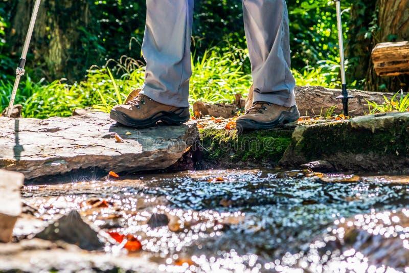 Donna della ragazza che fa un'escursione gli schoes e vista del dettaglio dei bastoni nell'attività all'aperto della foresta in n immagine stock