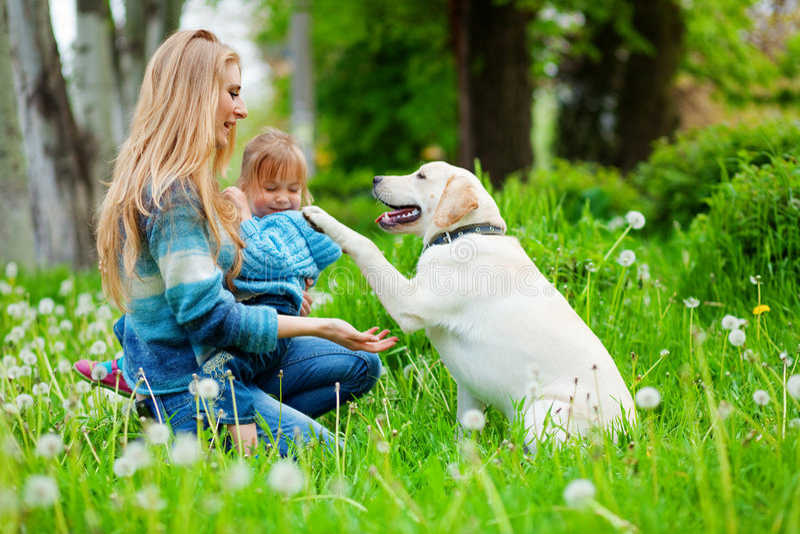 donna della ragazza del cane fotografia stock libera da diritti