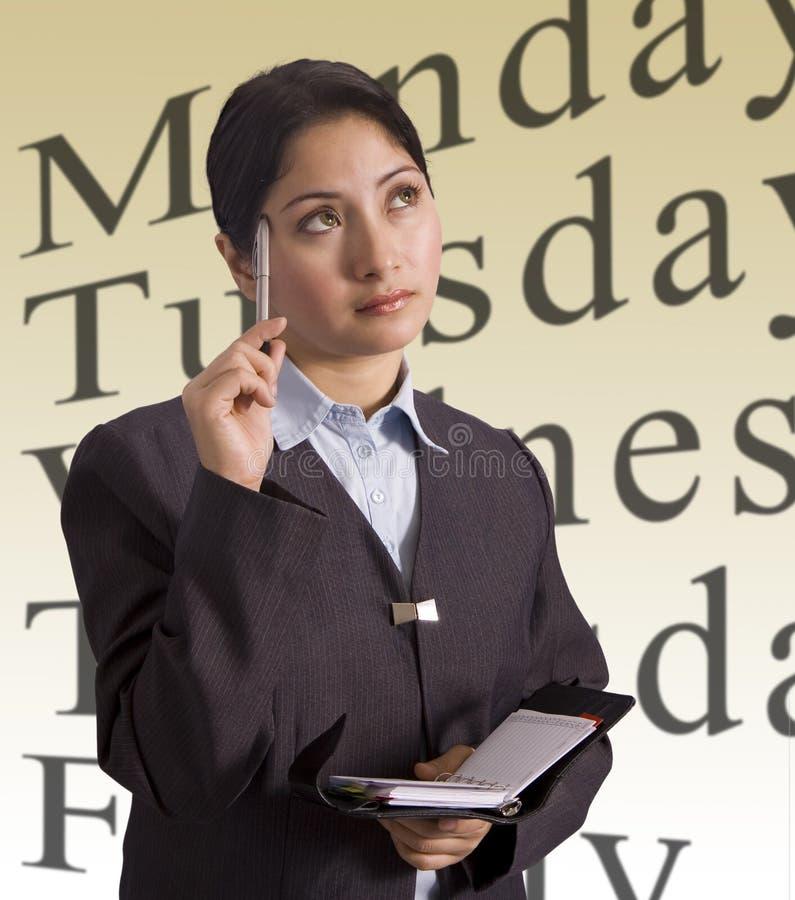 Donna di affari e programma immagini stock libere da diritti