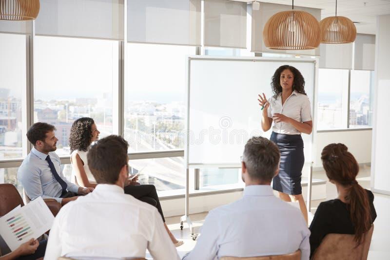 Donna di affari Making Presentation Shot attraverso la entrata immagini stock libere da diritti