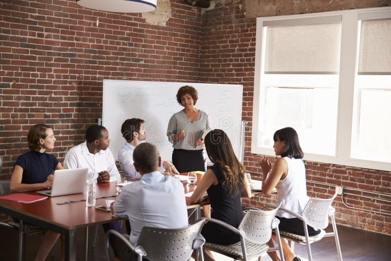 Donna di affari matura Addressing Boardroom Meeting immagini stock libere da diritti