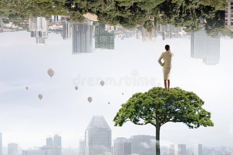 Donna di affari sulla corona dell'albero Media misti fotografie stock