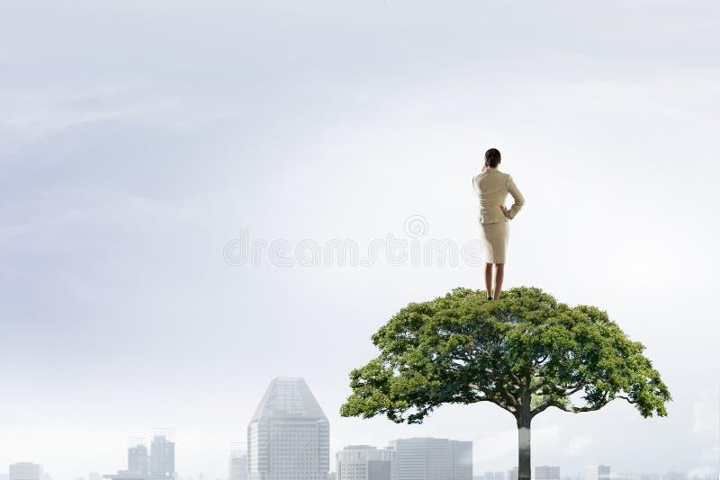 Donna di affari sulla corona dell'albero Media misti fotografia stock libera da diritti