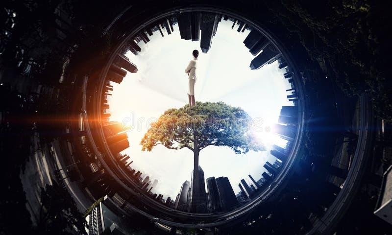 Donna di affari sulla corona dell'albero Media misti fotografie stock libere da diritti