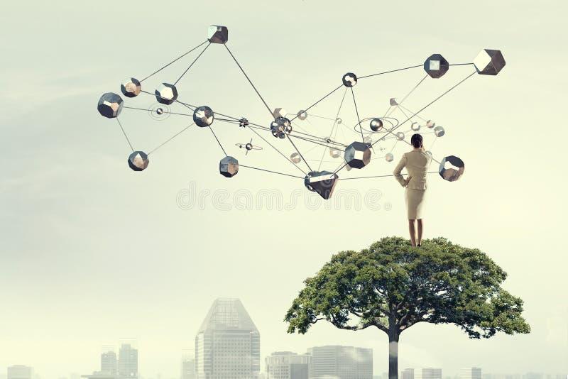 Donna di affari sulla corona dell'albero Media misti fotografia stock