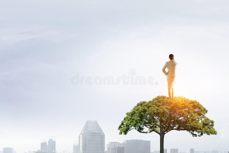 Donna di affari sulla corona dell'albero Media misti immagini stock