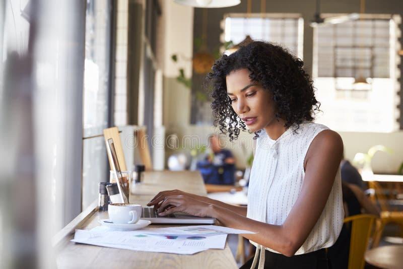 Donna di affari By Window Working sul computer portatile in caffetteria fotografia stock