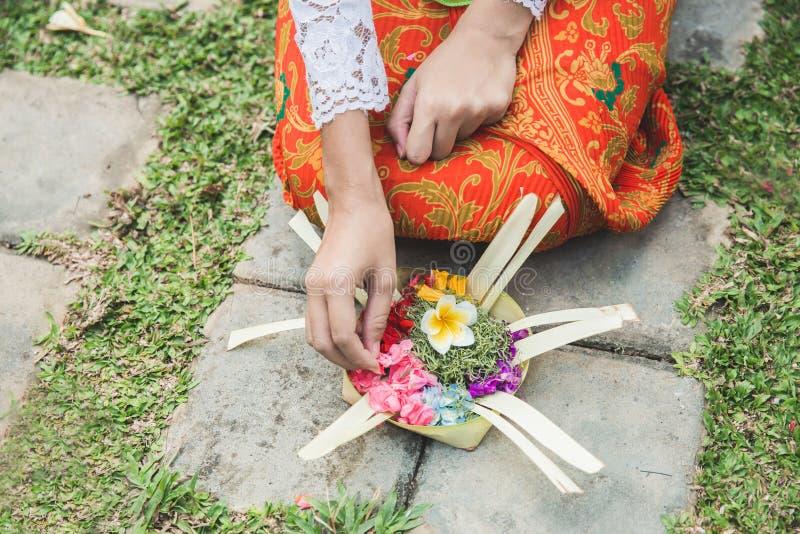 Donna di balinese che fa i sari d'offerta del canang di rituale e che prega a fotografia stock
