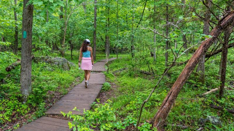 Donna di mezza età che cammina su una pista di boardwalk in Parco Nazionale immagine stock