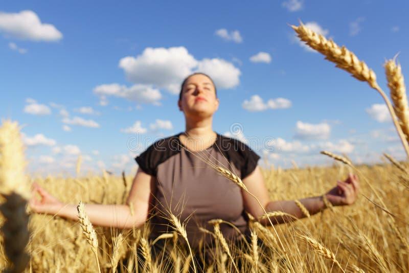 Donna di peso eccessivo che medita nel campo fotografia stock