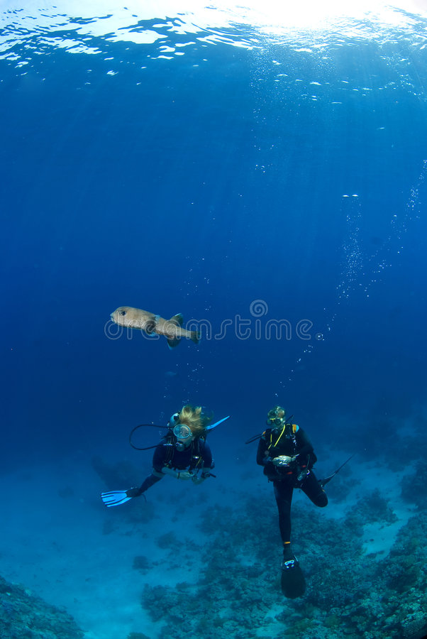 Donna due con un pesce immagini stock