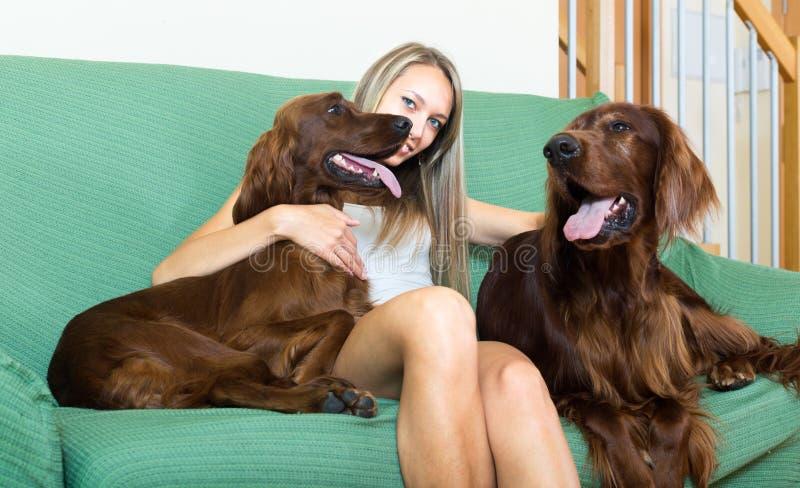 Donna e cani felici fotografie stock