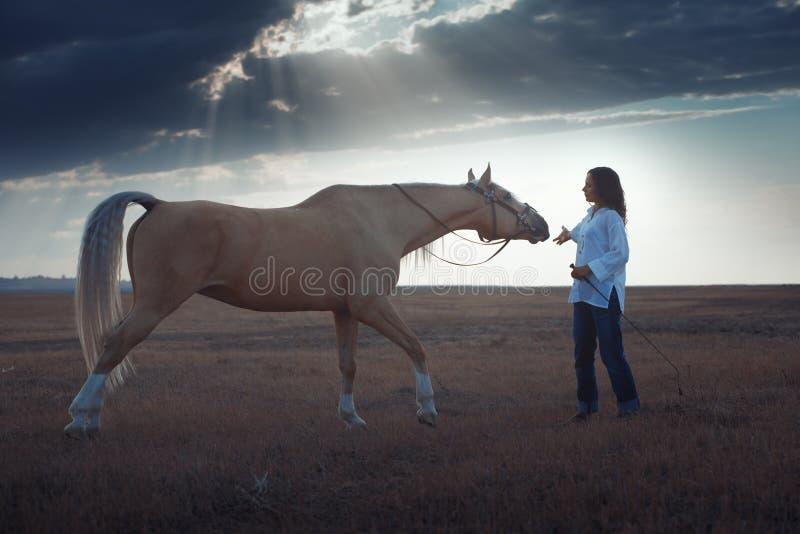 Donna e cavallo immagini stock