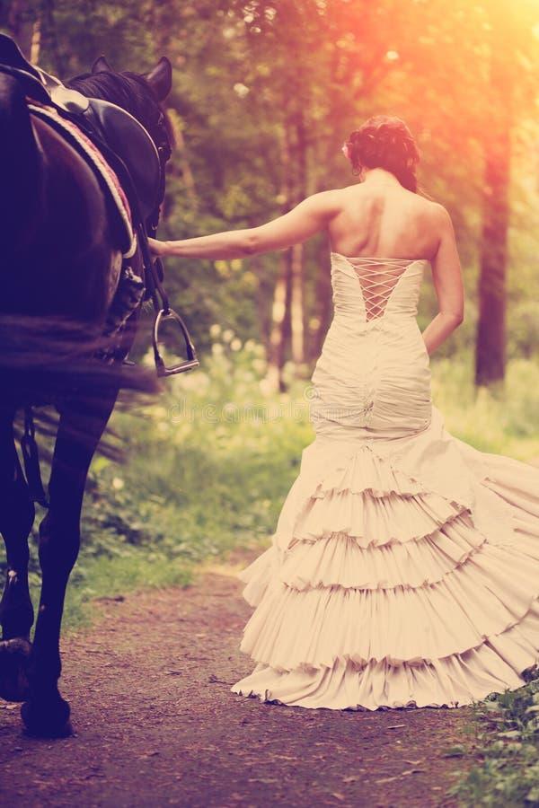 Donna e cavallo fotografia stock