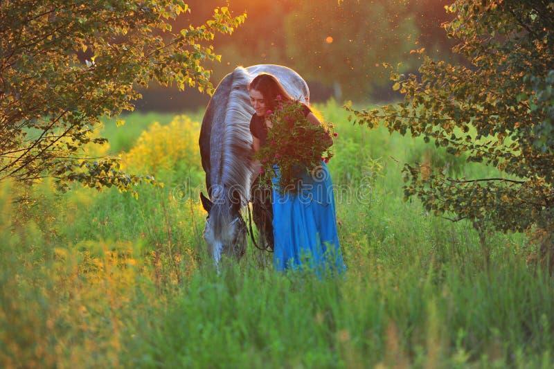 Donna e cavallo grigio alla luce dorata immagini stock
