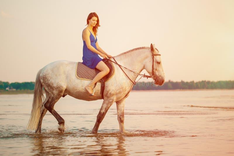 Donna e cavallo sui precedenti del cielo e dell'acqua Ragazza o di modello immagine stock