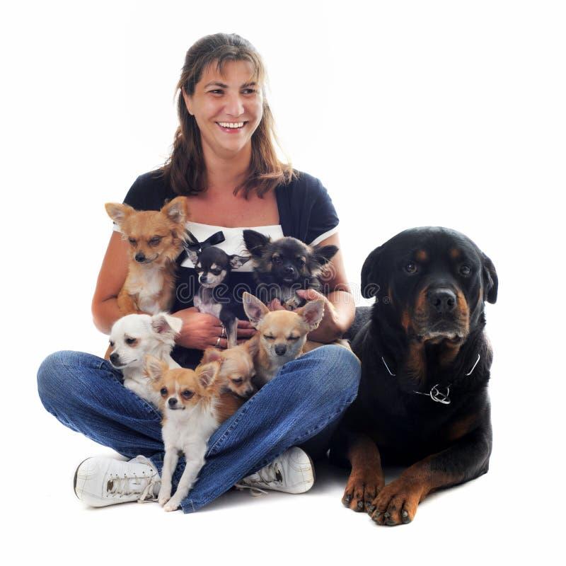 Donna ed i suoi cani fotografie stock libere da diritti