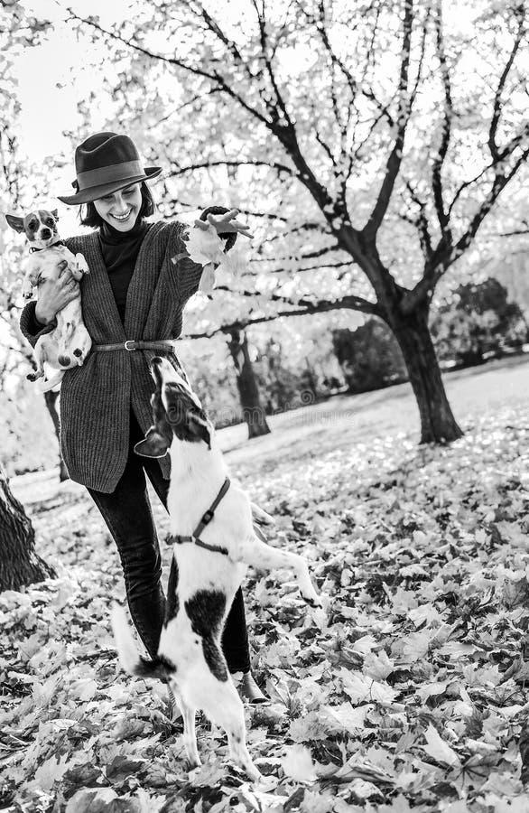 Donna felice che gioca con i cani all'aperto in autunno immagini stock libere da diritti