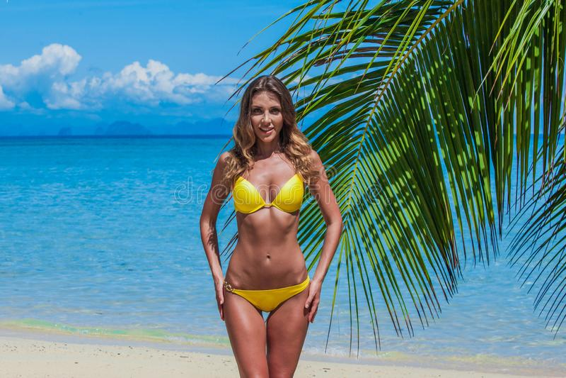 Donna felice sulla spiaggia immagini stock libere da diritti
