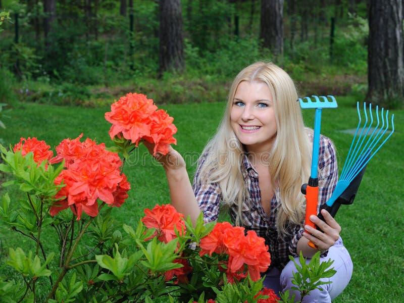 Donna graziosa del giardiniere con gli strumenti di giardinaggio fotografia stock