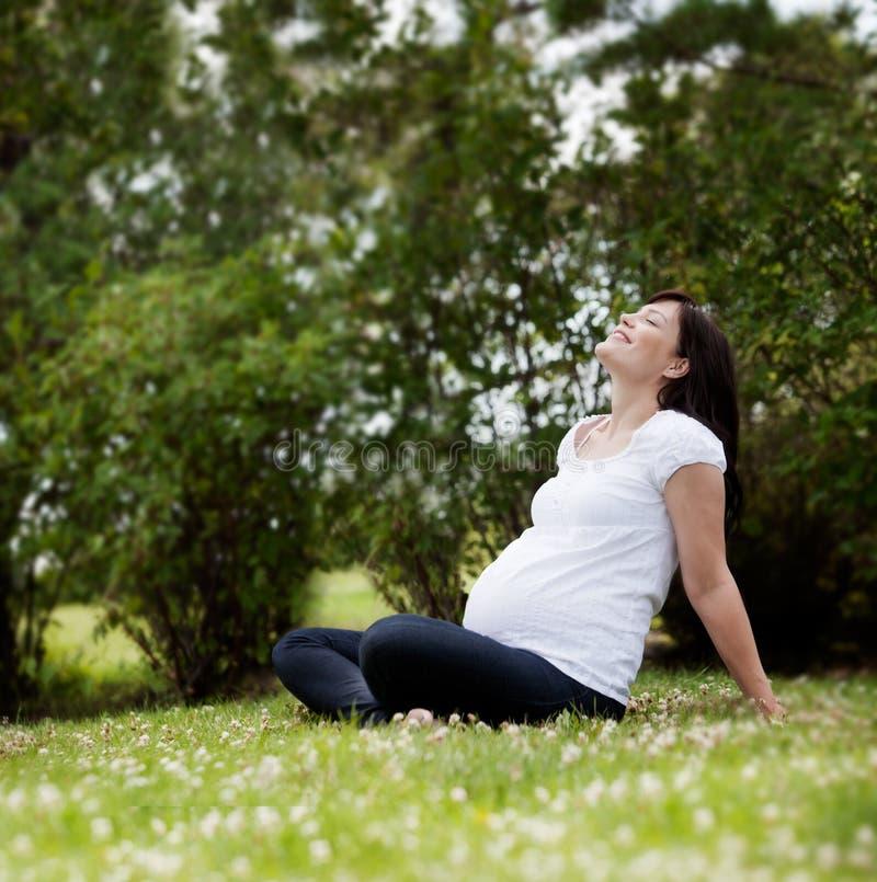 Donna incinta in parco fotografia stock
