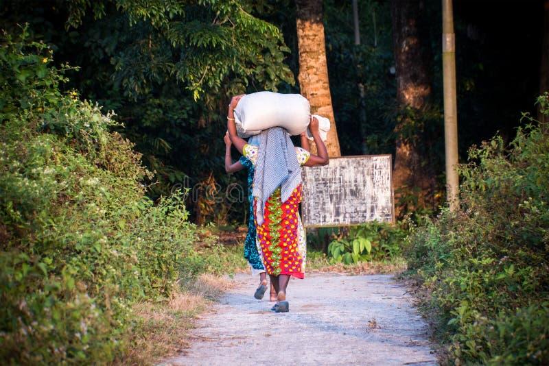 Donna indiana che porta un pacco sulla sua testa fotografie stock libere da diritti