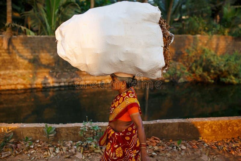 Donna indiana con una grande e borsa pesante di sottobosco sulla sua testa nei sari rossi Va lungo il canale di fiume con le palm immagini stock libere da diritti