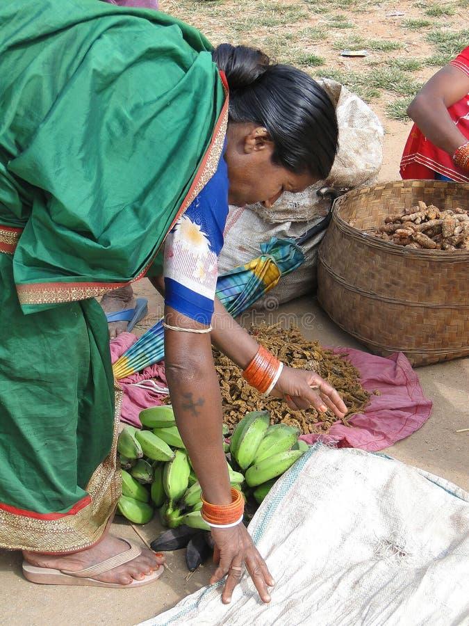 Donna indiana in saree immagini stock libere da diritti