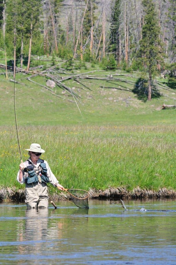 Donna maggiore attiva con i pesci che saltano per catturare con la rete immagine stock libera da diritti