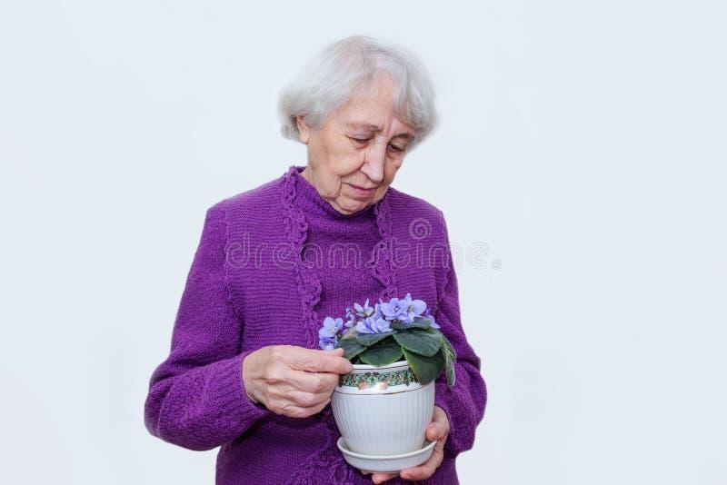 Donna matura che tiene fiore viola in un vaso isolato su fondo bianco immagini stock libere da diritti