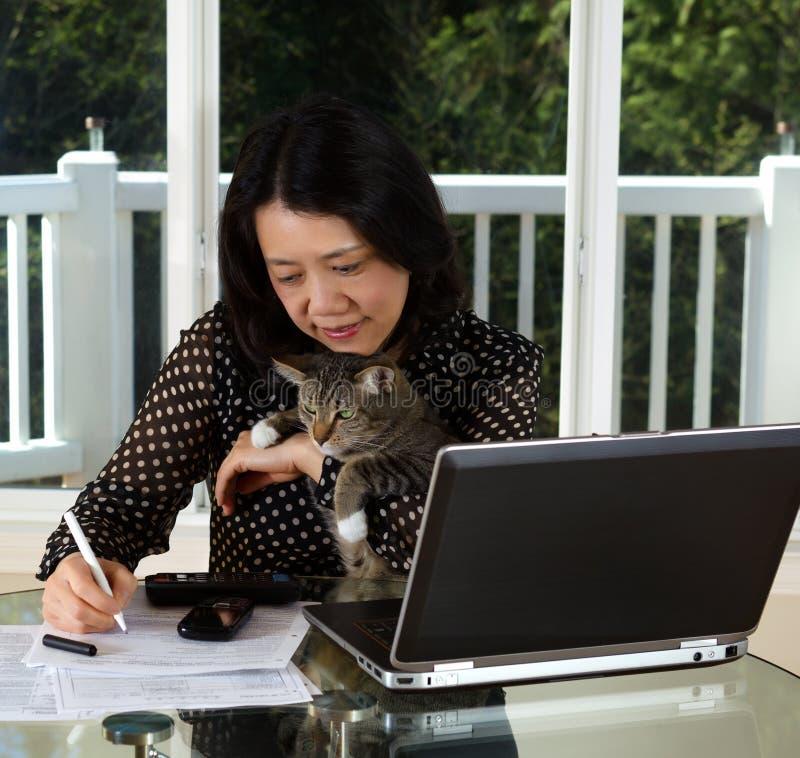 Donna matura e suo il gatto dell'animale domestico che lavorano a casa fotografie stock libere da diritti