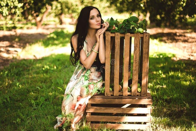 Donna in maxi vestito variopinto con la scatola con le mele in un luccio soleggiato immagine stock