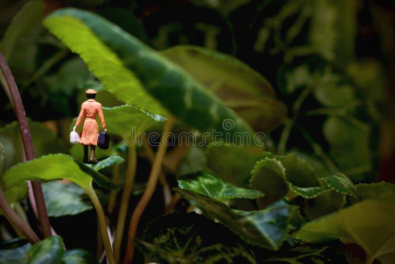 Donna miniatura persa nella giungla fotografia stock libera da diritti