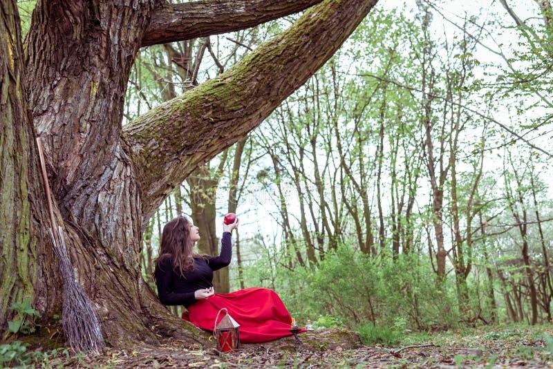 Donna mistica della strega immagini stock