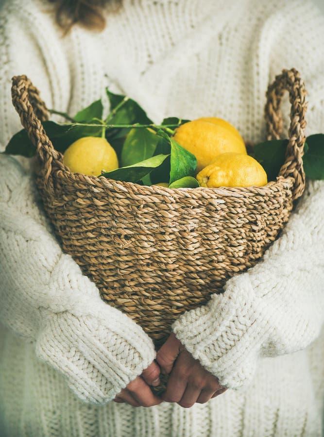 Donna nel canestro di lana bianco della tenuta del maglione dei limoni freschi immagine stock libera da diritti