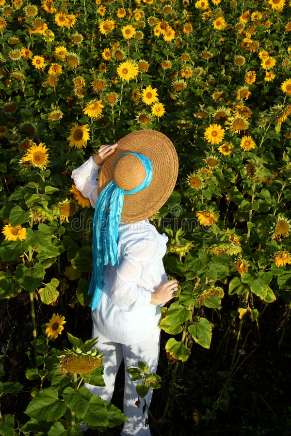 Donna nel giacimento del girasole fotografie stock libere da diritti