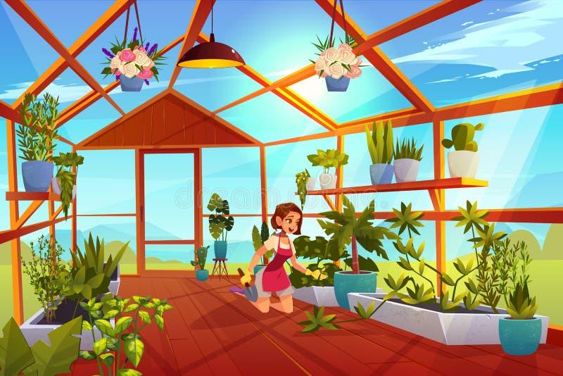Donna nella cura della serra del giardino di inverno delle piante di giardino royalty illustrazione gratis