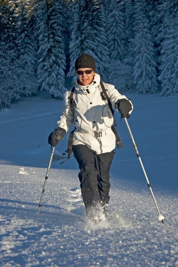 Download Donna nella neve immagine stock. Immagine di salute, attivo - 3880109